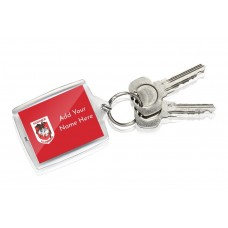 NRL Dragons Keyring