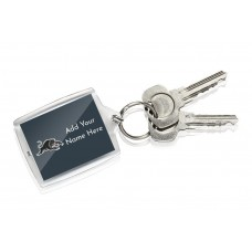 NRL Panthers Keyring